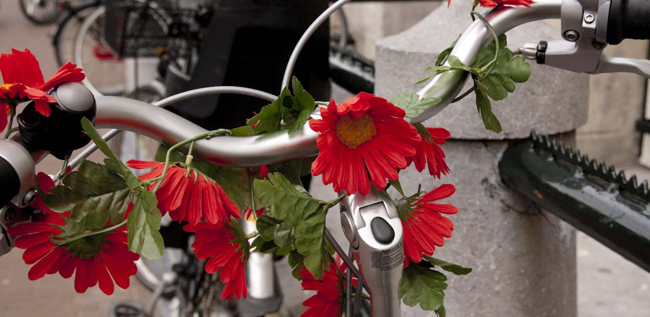flowers on bike in Amsterdam